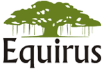 EQUIRUS SECURITIES PVT.LTD.
